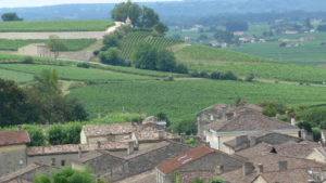 The vineyards around Saint Emilion